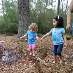 Free Forest School of Houston