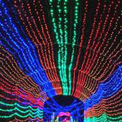 Holiday Lights all over Houston